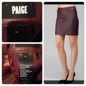 Paige Leather Skirt